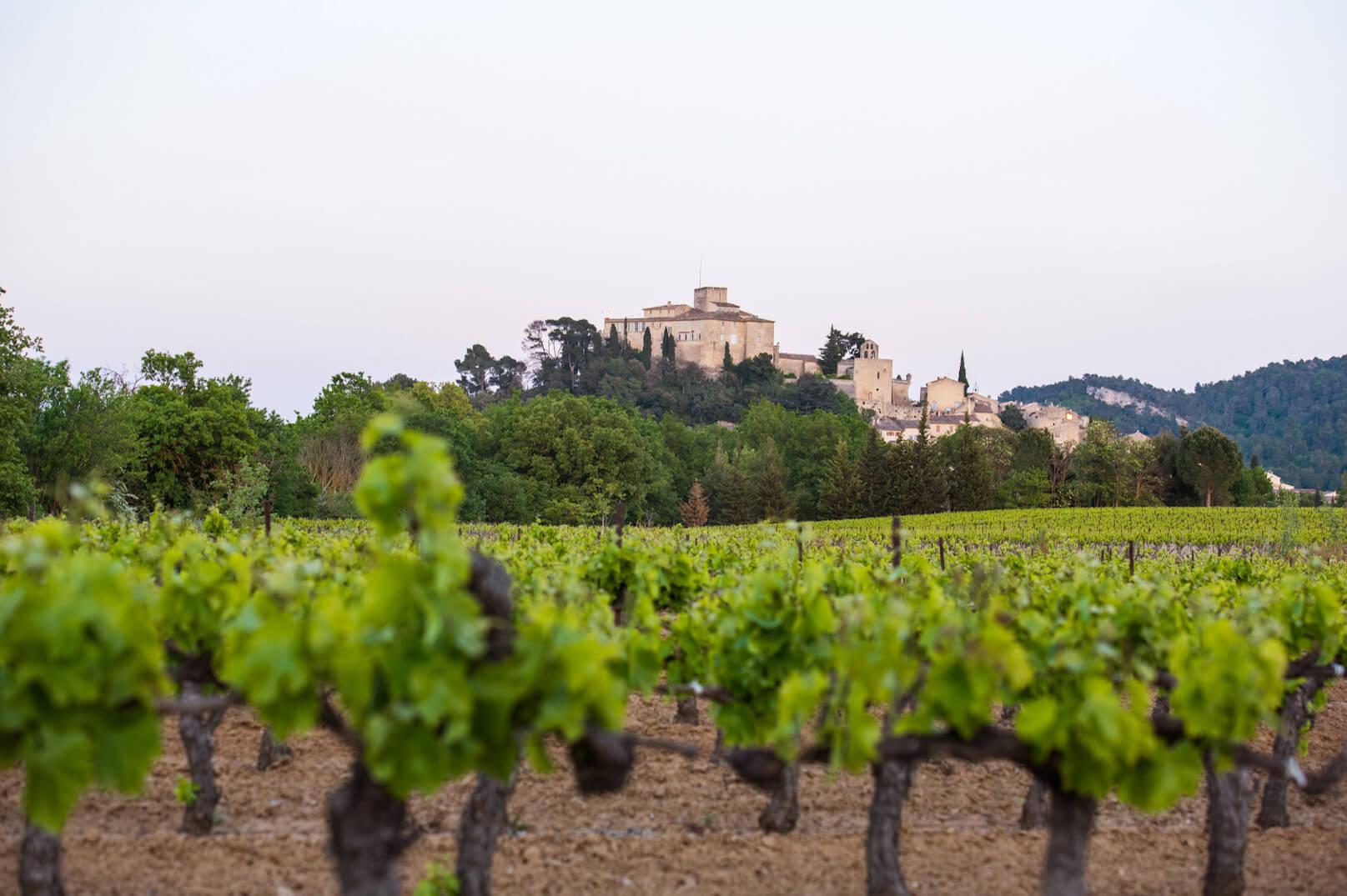 Les vignobles du Luberon