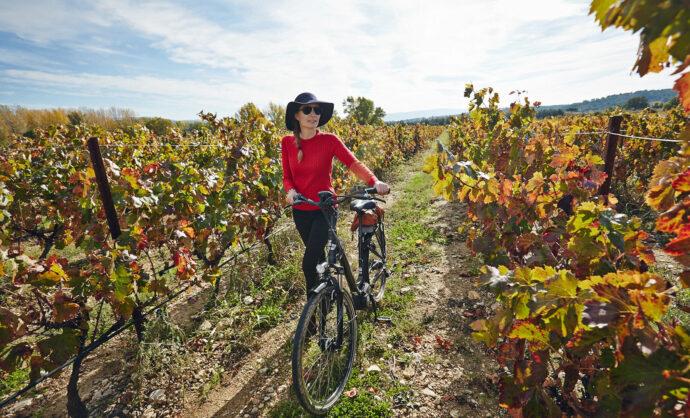 Balades dans les vignes de la vallée du Rhône @ Coquard
