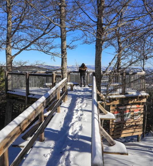 Panorama sur le sentier pédagogique du Ventoux