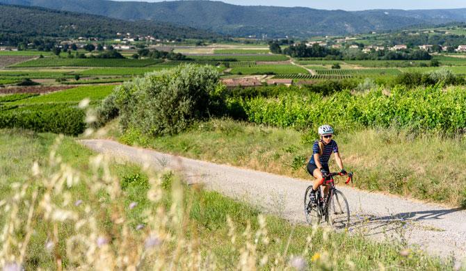 Séjour vélo en Provence
