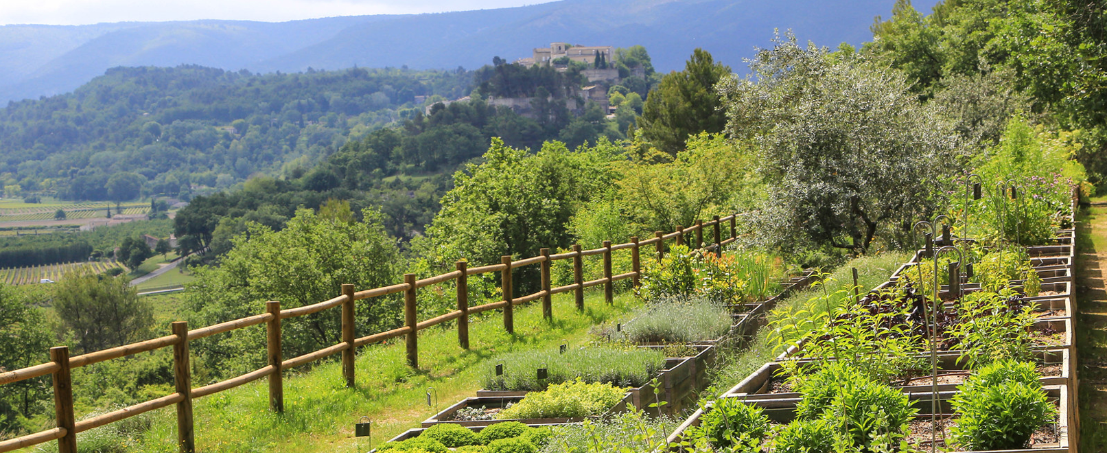 Jardin de la Citadelle à Ménerbes © Hocquel