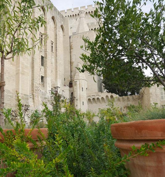 Jardin urbain V au palais des Papes