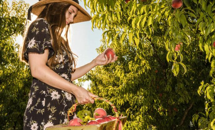 Agenda gourmand du printemps