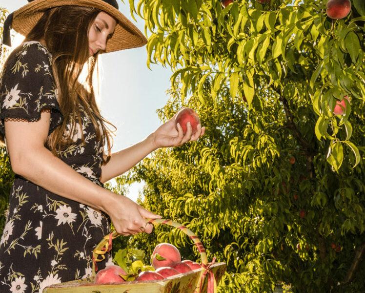 Agenda gourmand du printemps © Kessler