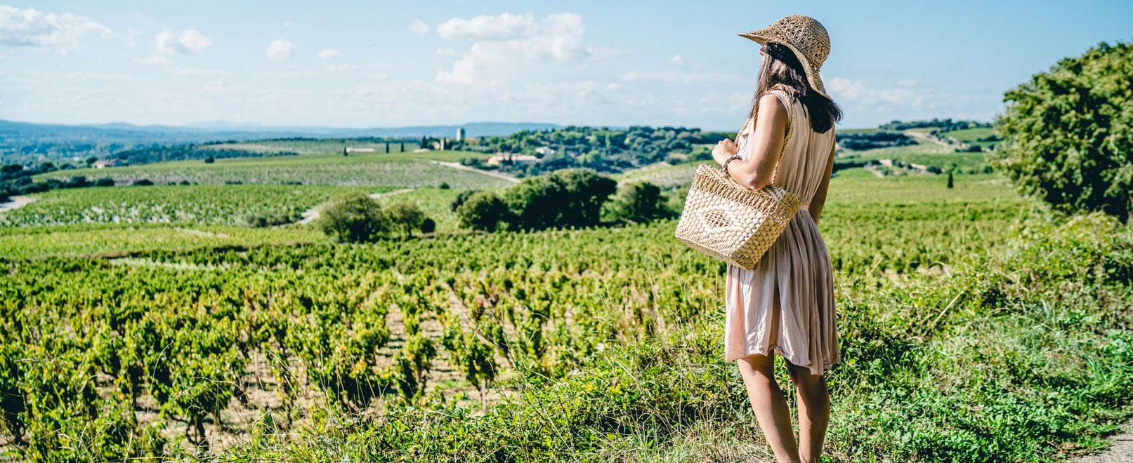 Vignobles de Châteauneuf-du-Pape © O'Brien