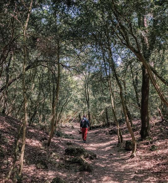 Rando Gorges du Régalon -Luberon