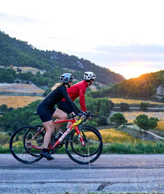 Vélo dans les vignes en Vaucluse
